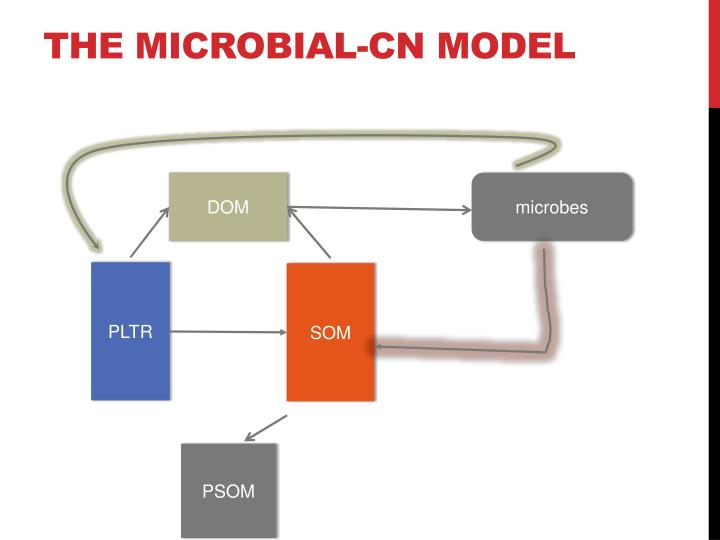The microbial-