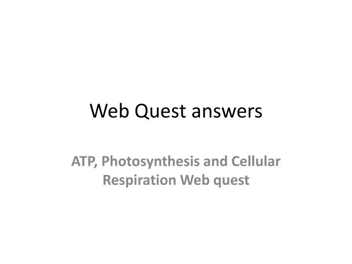 web quest answers n.