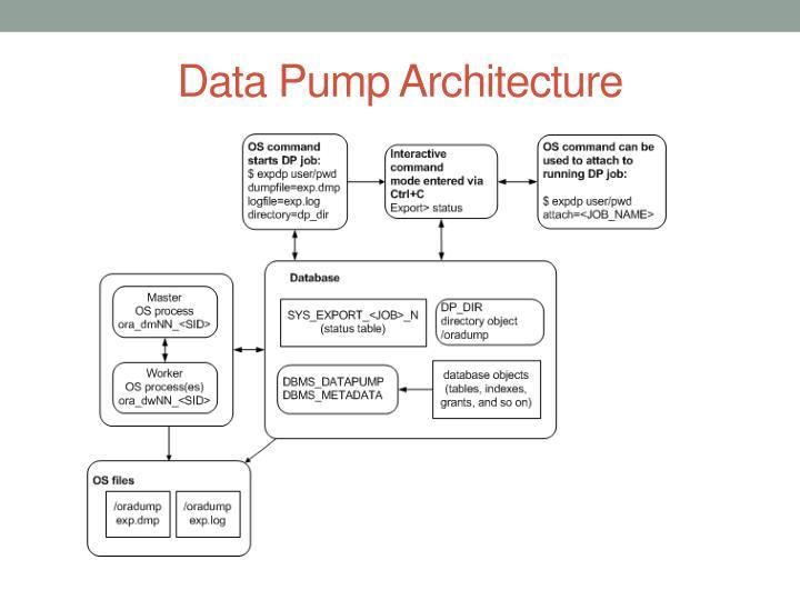 Data Pump Architecture