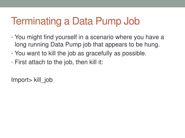 Terminating a Data Pump
