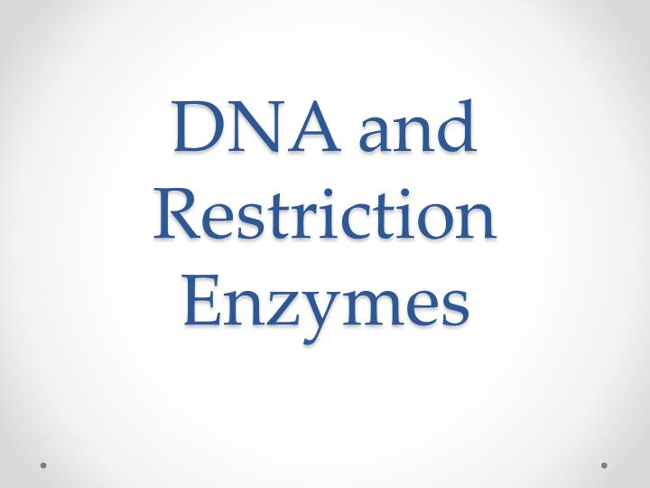 dna and restriction enzymes n.