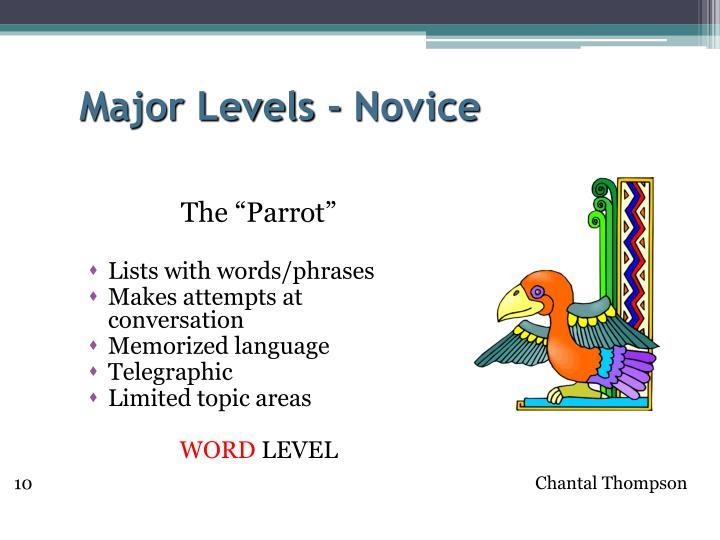 Major Levels - Novice