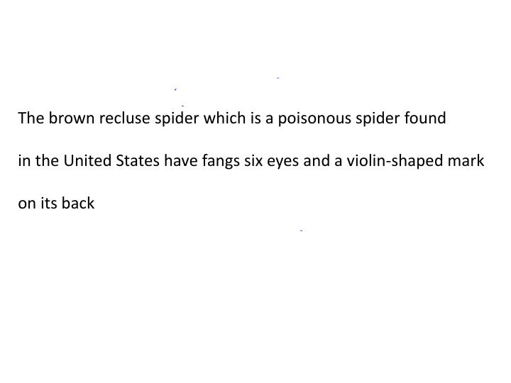 The brown recluse spider which is a poisonous