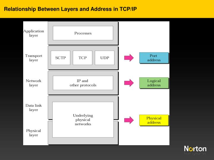 Relationship Between Layers and Address in TCP/IP
