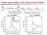 water vapor budget in the stratocumulus regime