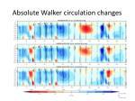 absolute walker circulation changes