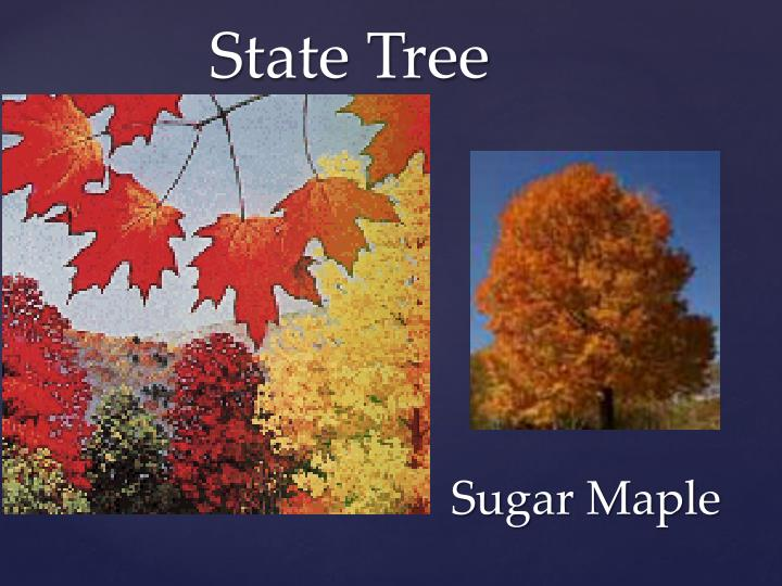 Ppt West Virginia State Symbols Powerpoint Presentation Id2567822