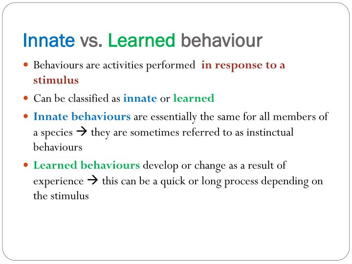 innate vs learned behaviour Did behaviors that seem ingrained become fixed through epigenetic  went on to  define learning as a product of positive or negative reinforcement  the framing  of instinct as ancestral behaviors that were learned and.