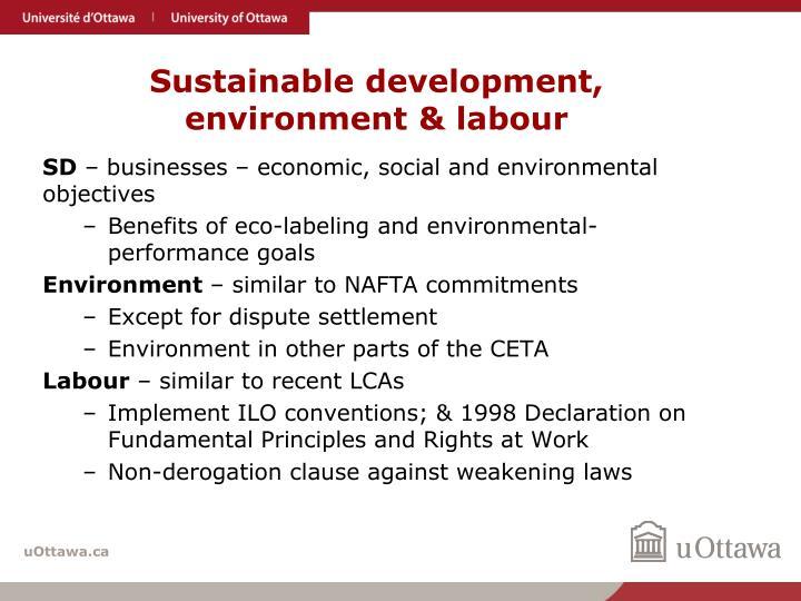 Sustainable development, environment & labour