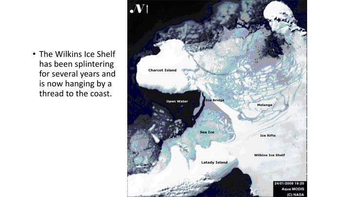 The Wilkins Ice Shelf has been splintering for several years and is now hanging by a thread to the coast.