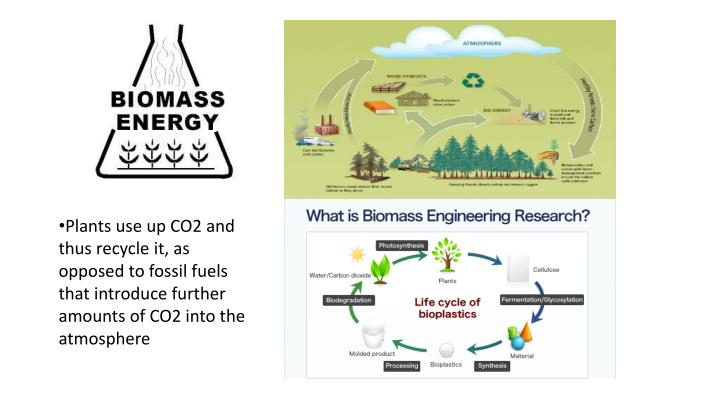 Plants use up CO2 and thus recycle it, as