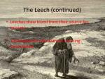 the leech continued