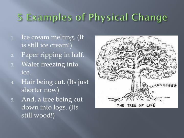 Ppt Change Of The Physical And Chemical Varieties Powerpoint