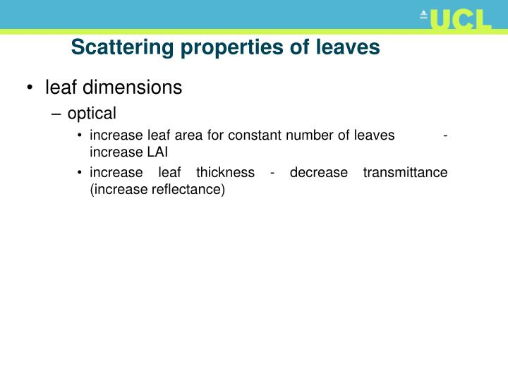 Scattering properties of leaves