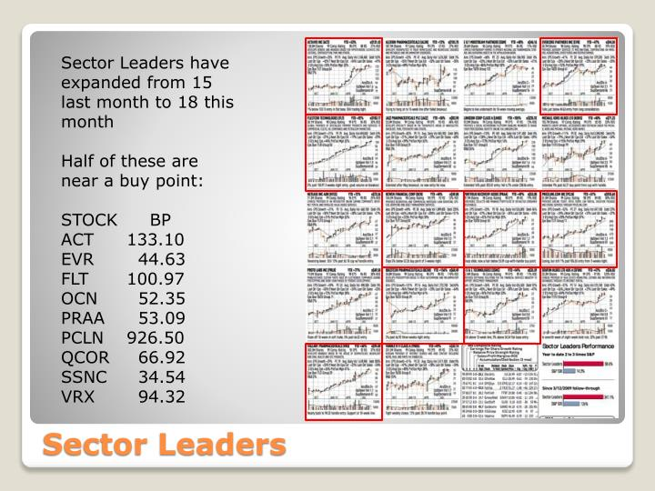 Sector Leaders have expanded from 15 last month to 18 this month