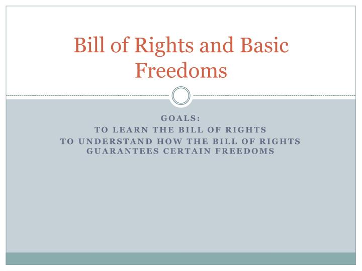 bill of rights and basic freedoms n.