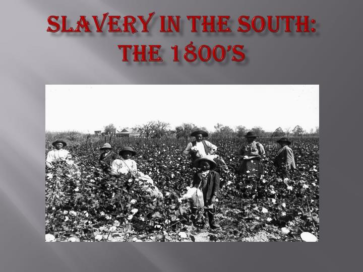 slavery in the south the 1800 s n.