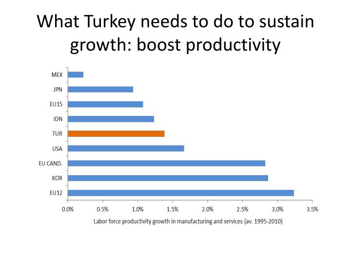 What Turkey needs to do to sustain growth: boost productivity