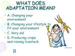 what does adaptation mean