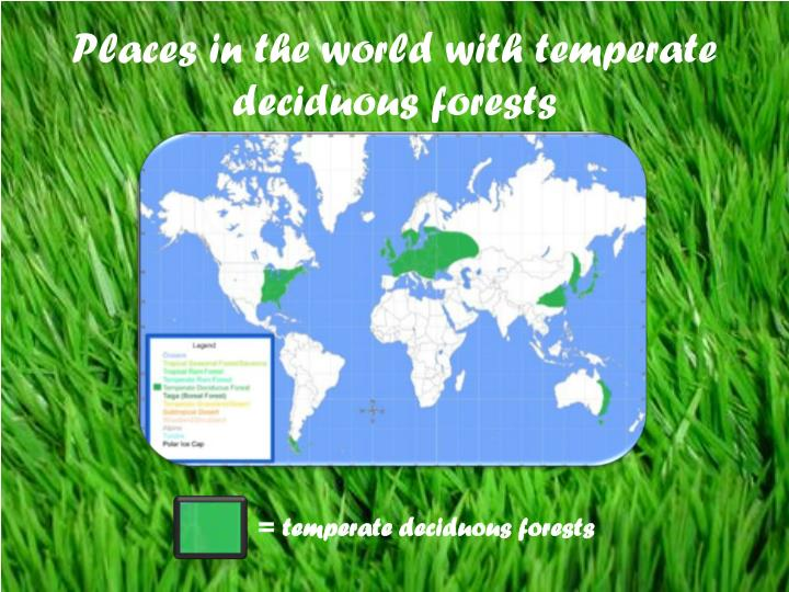 Places in the world with temperate deciduous forests