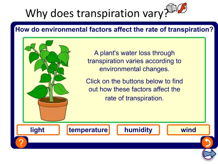 Why does transpiration vary?