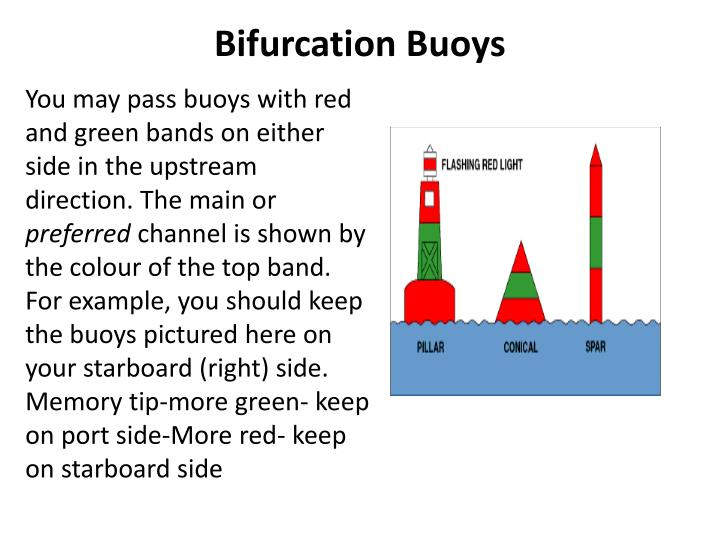 Bifurcation Buoys