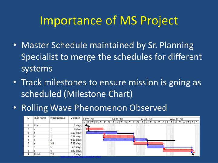 Importance of MS Project