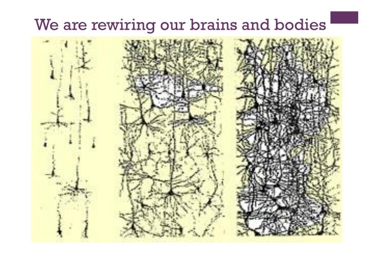 We are rewiring our brains and bodies