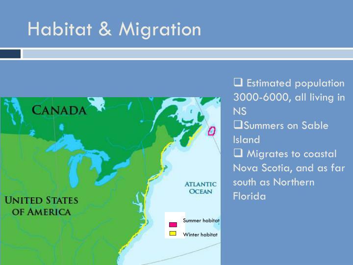 Habitat & Migration