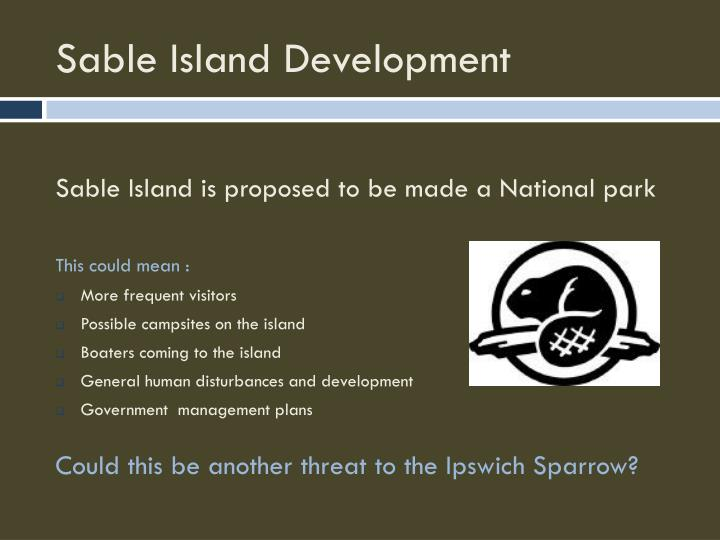 Sable Island Development
