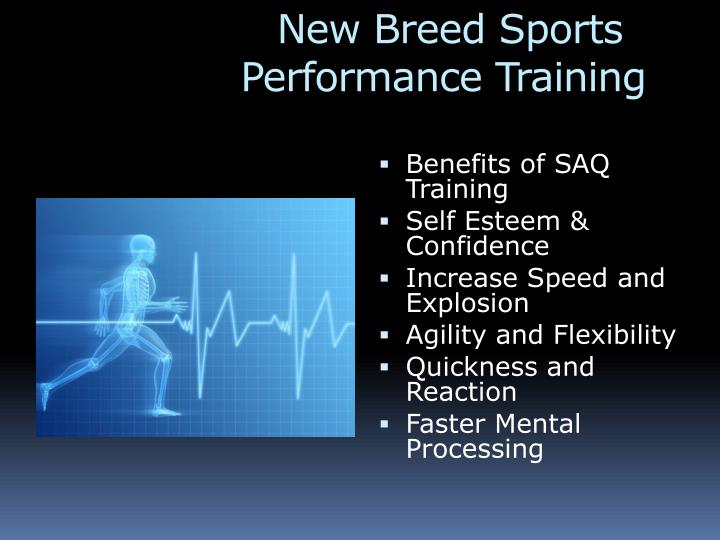 new breed sports performance training n.