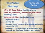 the perfect marriage1