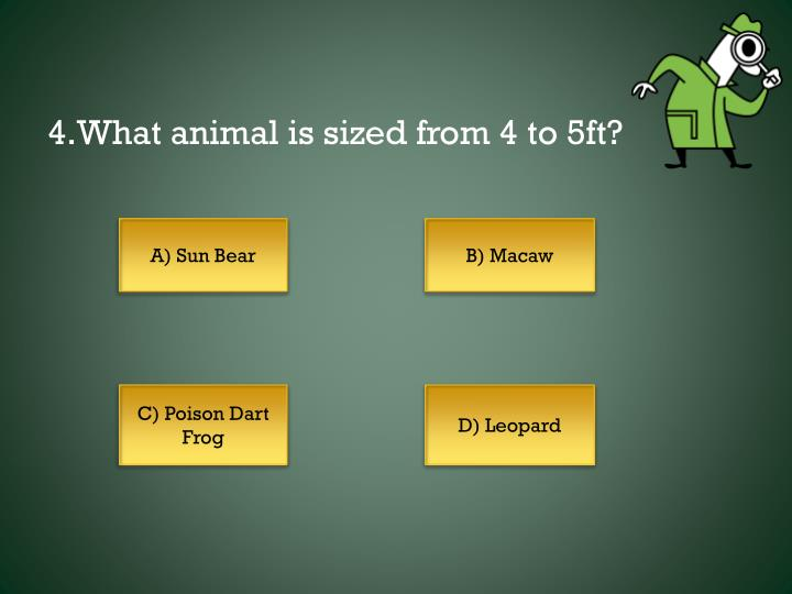 4.What animal is sized from 4 to 5ft?