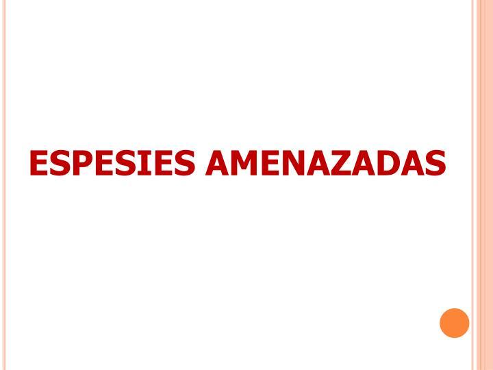 ESPESIES AMENAZADAS