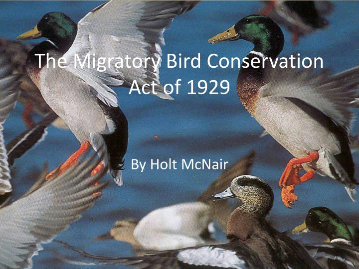 the migratory bird conservation act of 1929 n.