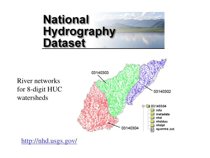 River networks