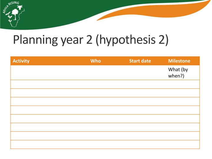 Planning year 2 (hypothesis 2)