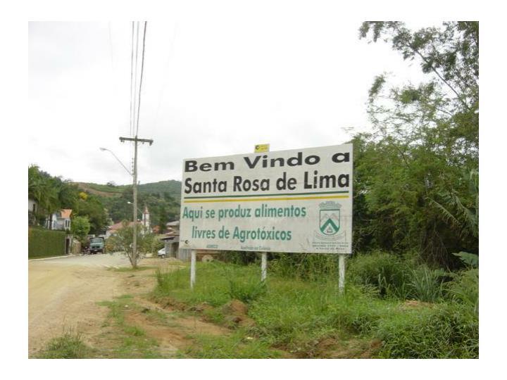 The campesino a campesino movement