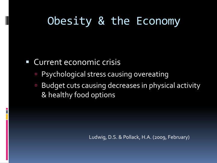 Obesity & the Economy