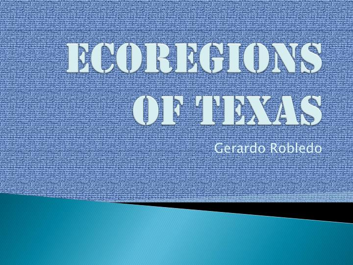 ecoregions of texas n.