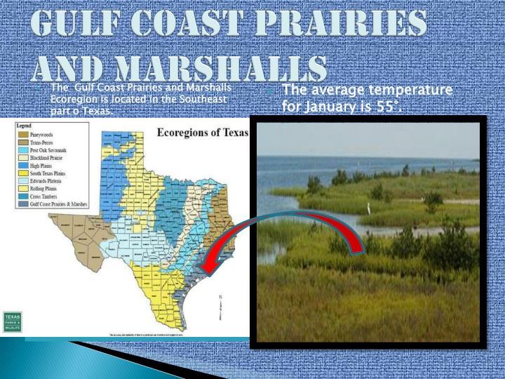 Gulf Coast Prairies and Marshalls