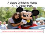 a picture o f mickey mouse at a d isney park