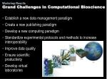 grand challenges in computational bioscience