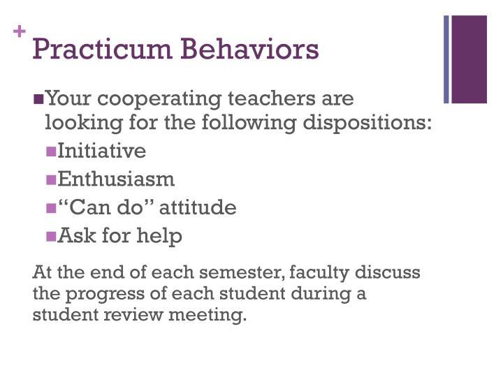 Practicum Behaviors
