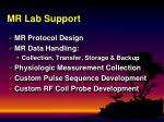 mr lab support