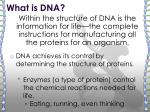 what is dna1
