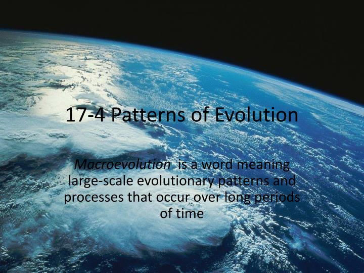 PPT 6060 Patterns Of Evolution PowerPoint Presentation ID60 Interesting Section 174 Patterns Of Evolution