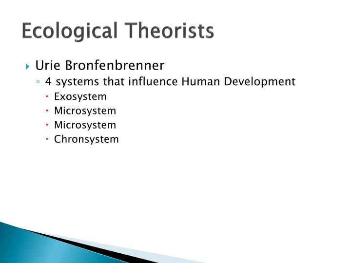 Ecological Theorists