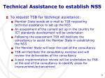 technical assistance to establish nss
