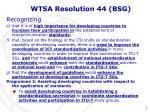 wtsa resolution 44 bsg